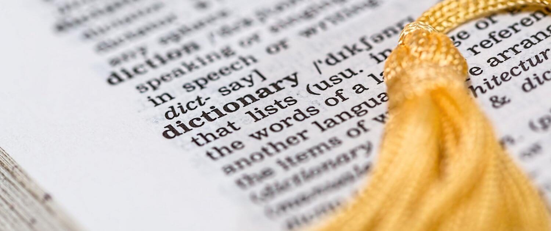 diccionario del fracaso